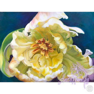 intrigue- cream parrot tulip big flower painting by Anita Nowinska