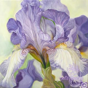 Patience- Lilac Iris Flower Painting