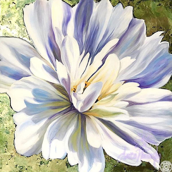 Starburst- White Cosmos Flower Painting