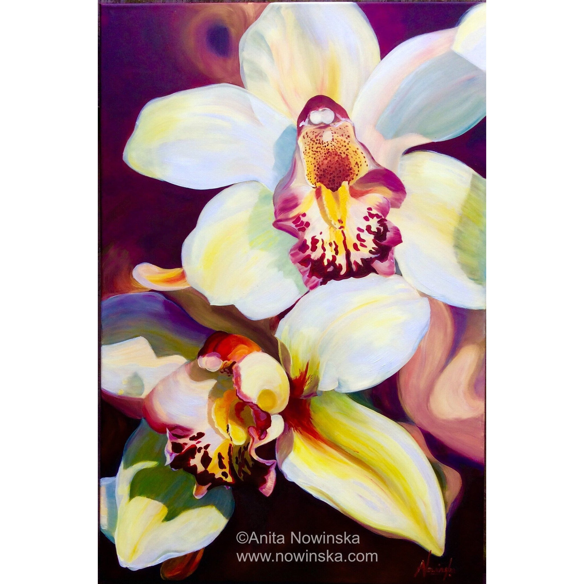 Voracious- Orchid, Flower Painting, Burgundy, yellow, pink, acrylic on canvas original
