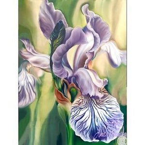 pale lilac flag iris flower painting by Anita Nowinska