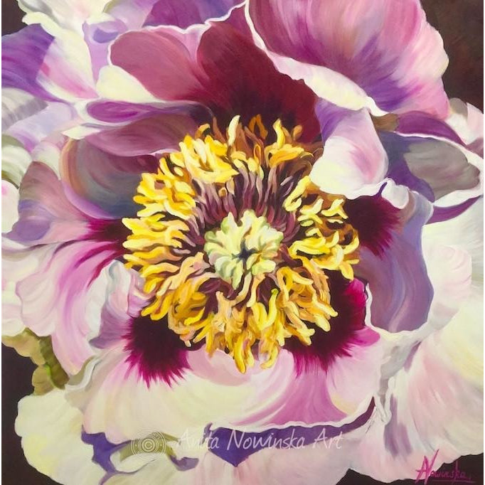 White, pink, yellow tree peony- flower painting- oil on canvas- anita nowinska