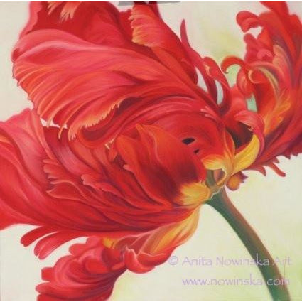 Pack of 4, 'Feelme' Art Greetings Cards-Razzamatazz, Red Parrot Tulip