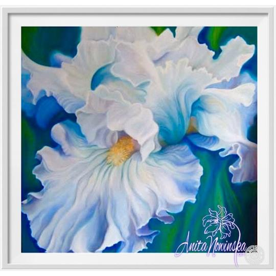 small framed print of pale blue iris flower painting by Anita nowinska
