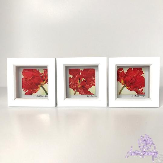 small framed floral prints of red tulips for gifts & presents