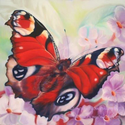 summertime-peacock butterfly-anita nowinska-painting, greetings card