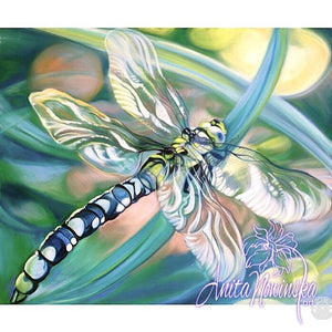 'Transformation'- Turquoise Dragonfly