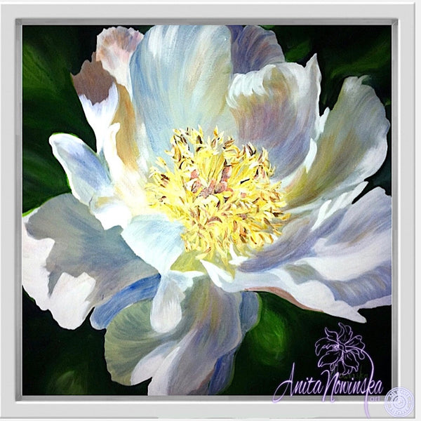 whote tree peony floral canvas art anita nowinska