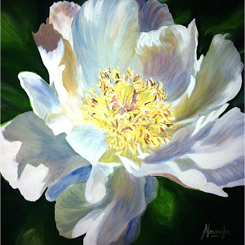 Wish- White Peony Flower Canvas