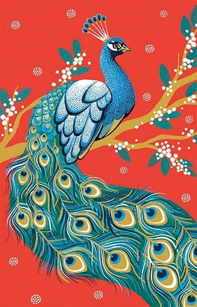 Note Cards - Peacock - Pretty Shiny Shop