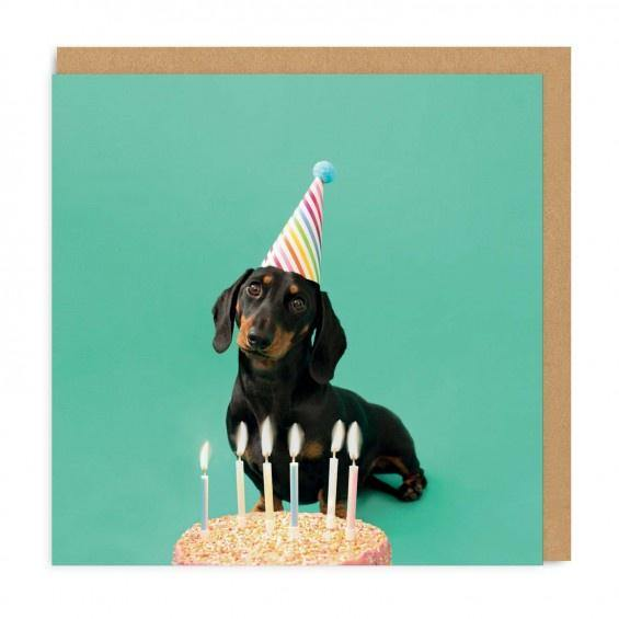 Dachshund Party Hat Card