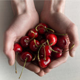 CHERRIES AND ROAST CHESTNUTS