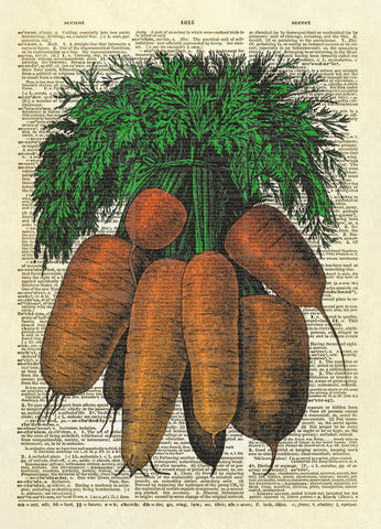 Bunch of Carrots Dictionary Art Print