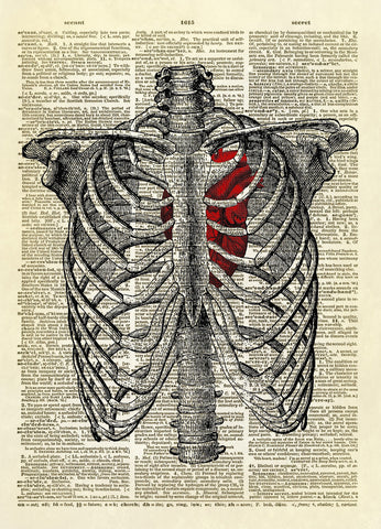 Human Rib Cage with Heart Dictionary Art Print