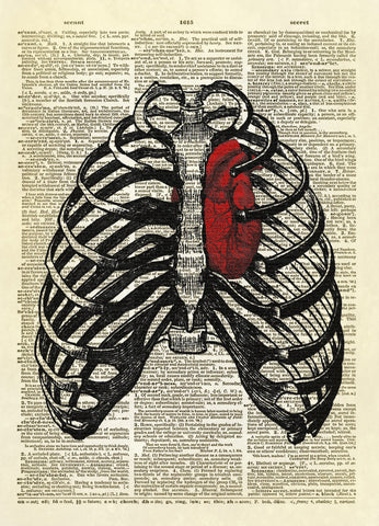 Human Thorax with Heart Dictionary Art Print