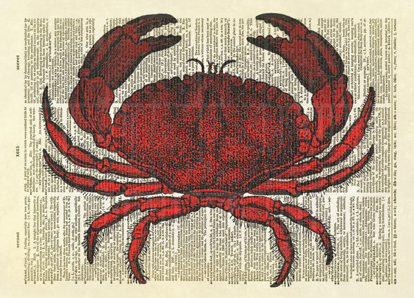 Dungeness Crab Dictionary Art Print