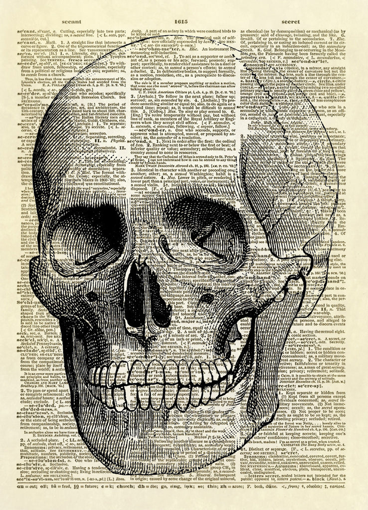 Human Skull Dictionary Art Print