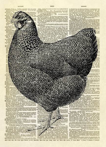 Chicken Hen Farmhouse Dictionary Art Print