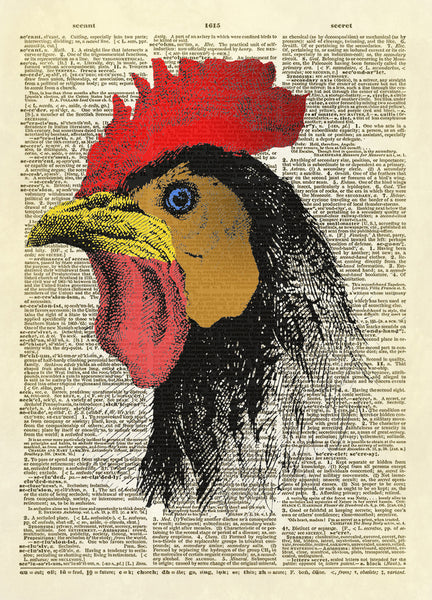 Color Rooster Head Dictionary Art Print