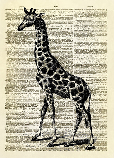 Giraffe African Animal Dictionary Art Print