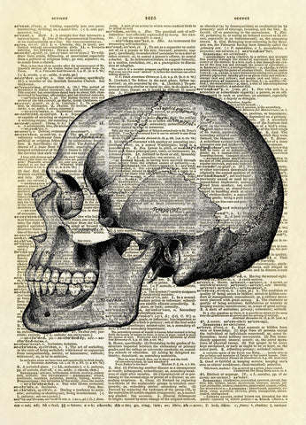 Human Skull Profile Dictionary Art Print