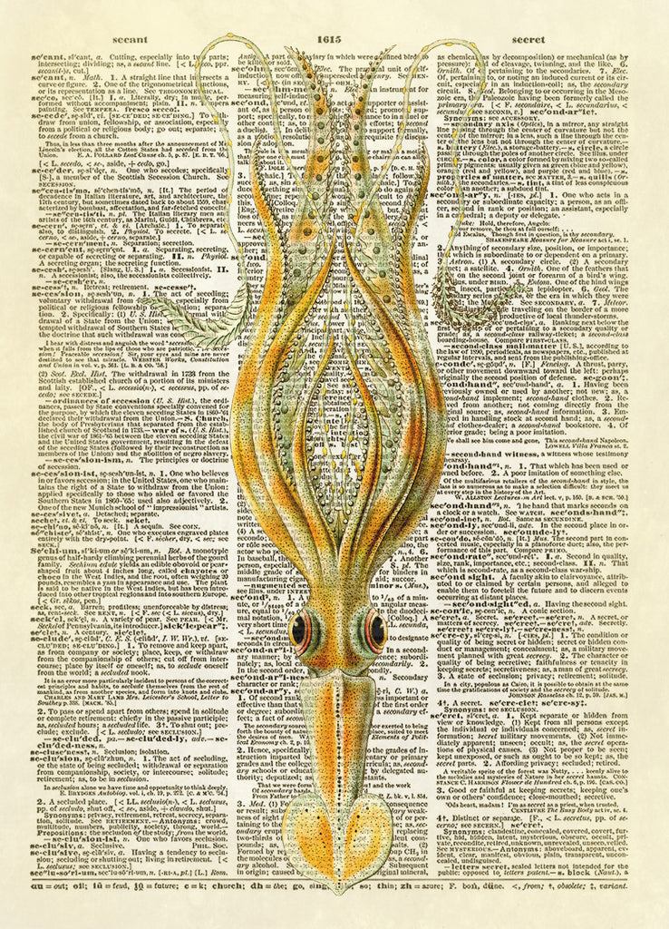 Curly Squid Dictionary Art Print