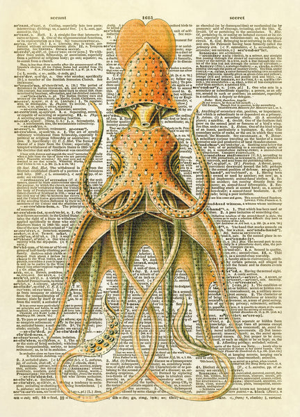 Hooded Squid Dictionary Art Print