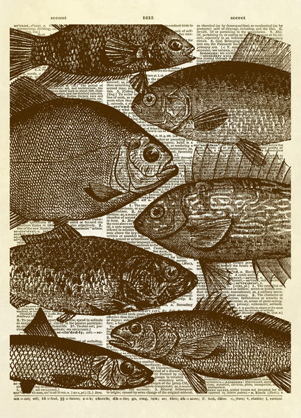 School of Fish Dictionary Art Print