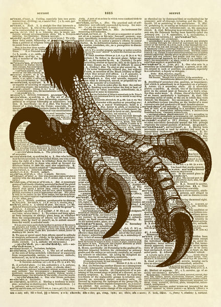 Bald Eagle Talon Dictionary Art Print
