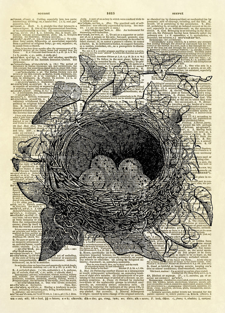 Bird Nest with Eggs Dictionary Art Print