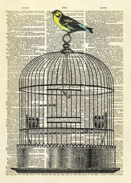 Bird on Cage Dictionary Art Print