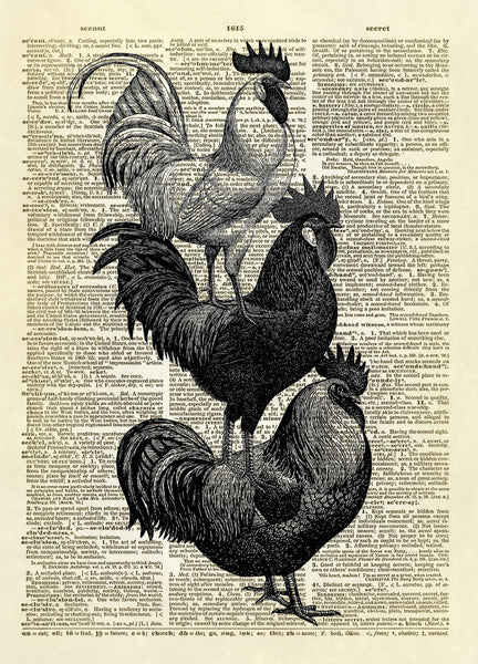 Stacked Roosters Dictionary Art Print