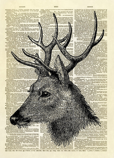 Deer Head Dictionary Art Print