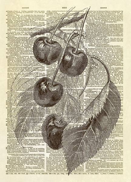 Cherries Fruit on Branch Dictionary Art Print