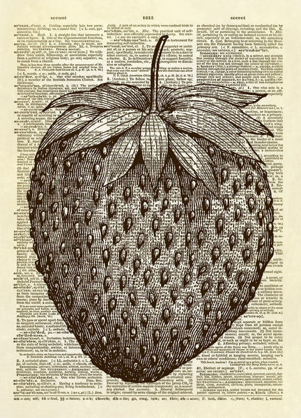 Strawberry Dictionary Art Print