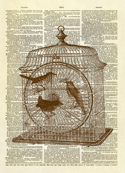 Birds in a Cage Dictionary Art Print