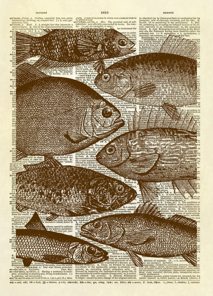 Many Fish Dictionary Art Print