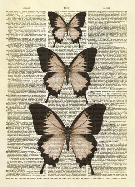 Ulysses Butterflies Dictionary Art Print