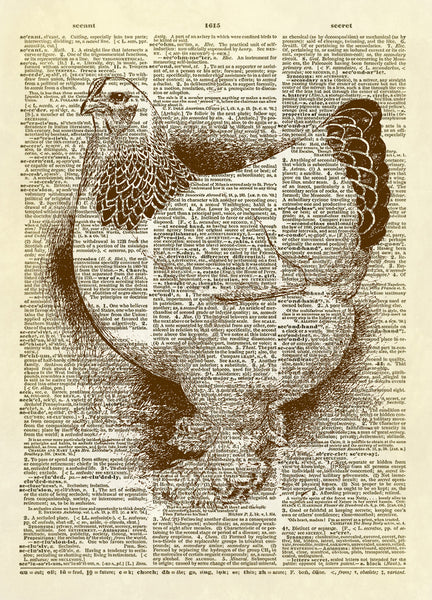 White French Hen Dictionary Art Print