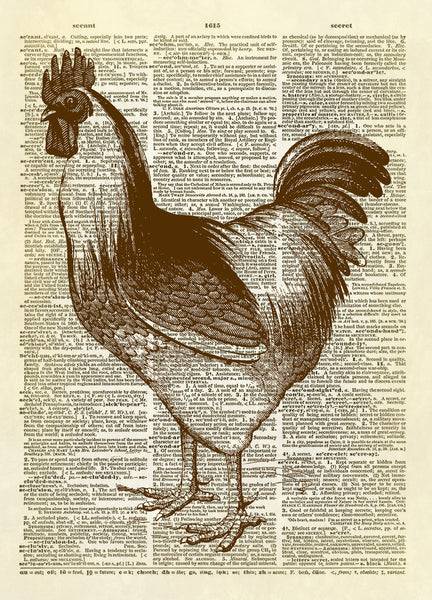Handsome Rooster Dictionary Art Print