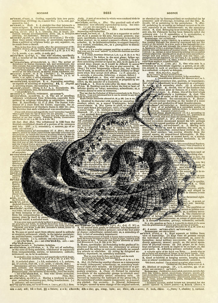 Hissing Snake Reptile Dictionary Art Print