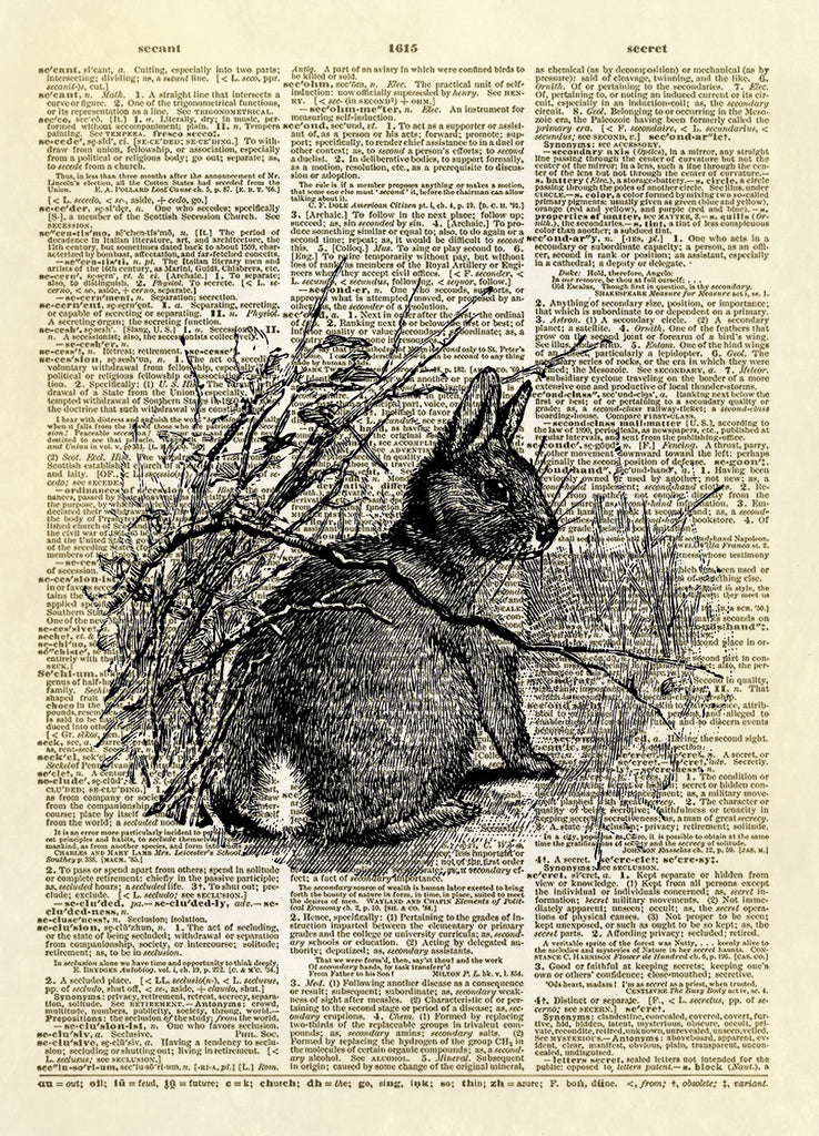 Cottontail Bunny Rabbit Dictionary Art Print