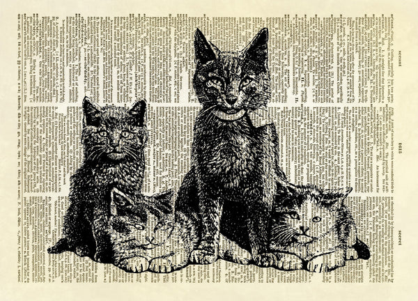 Kitty Cat Family Dictionary Art Print