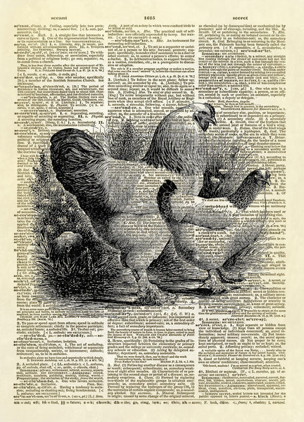 Two Chickens Dictionary Art Print