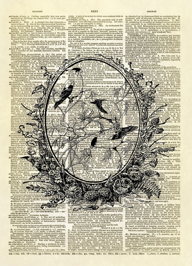 Birds in Floral Frame Dictionary Art Print