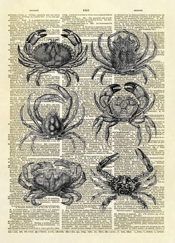 Six Ocean Crabs Beach House Dictionary Art Print