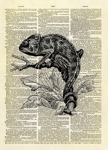 Chameleon Dictionary Art Print