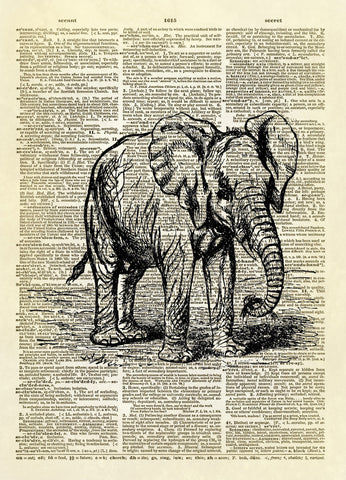 African Elephant Art Dictionary Art Print