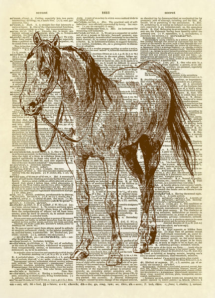 Horse and Bridle Dictionary Art Print