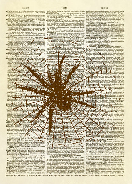 Spider in Web Dictionary Art Print